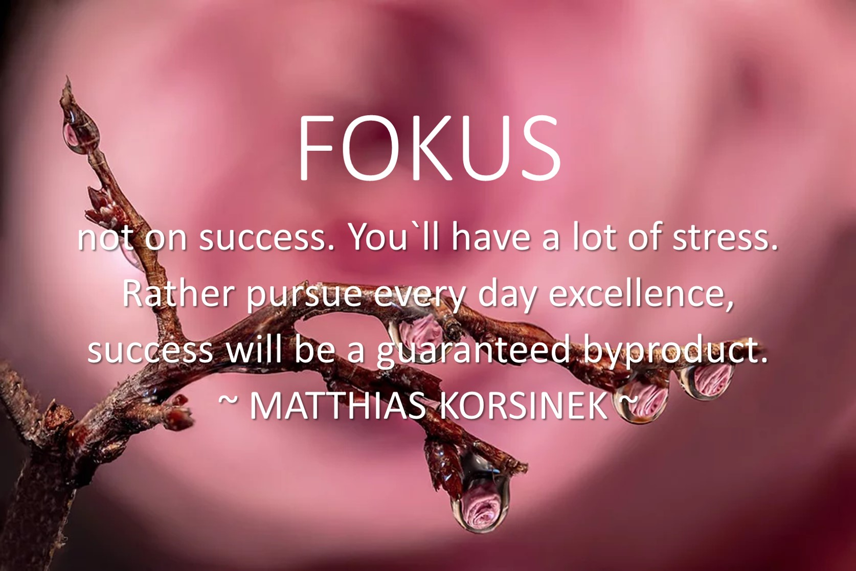 FOKUS not on success but on excellence