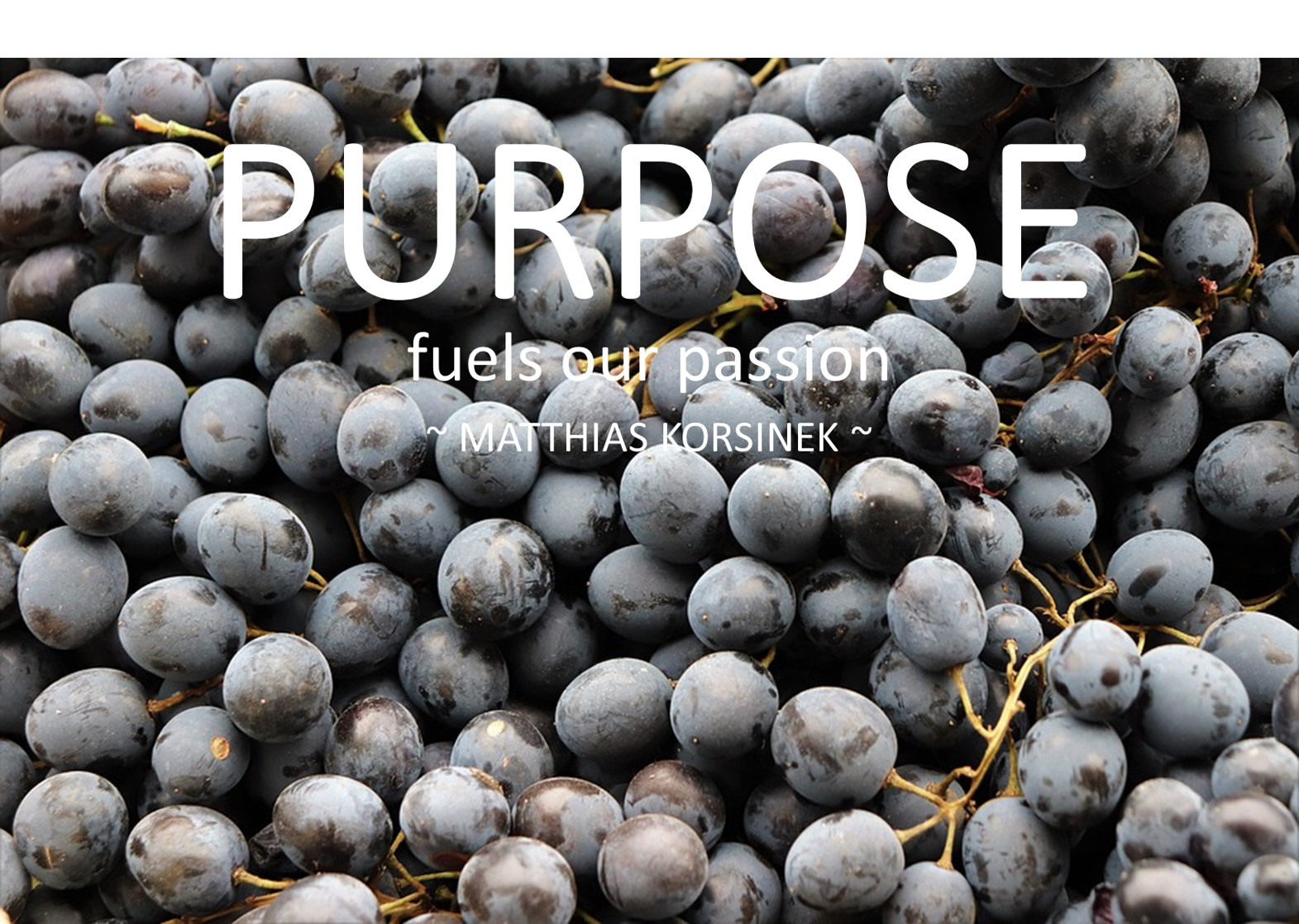 PURPOSE fuels our passion